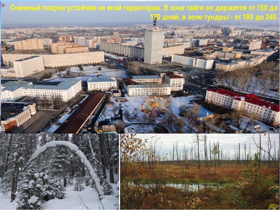 Снежный покров устойчив на всей территории. В зоне тайги он держится от 150...
