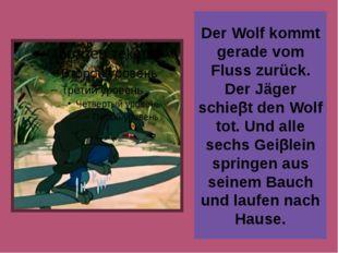 Der Wolf kommt gerade vom Fluss zurück. Der Jäger schieβt den Wolf tot. Und a
