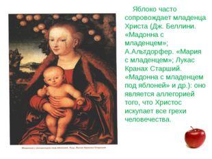 Яблоко часто сопровождает младенца Христа (Дж. Беллини. «Мадонна с младенцем