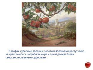 В мифах чудесные яблони с золотым яблочками растут либо на краю земли, в заг
