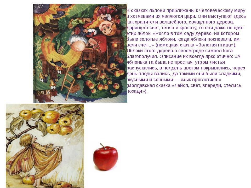 В сказках яблони приближены к человеческому миру и хозяевами их являются цар...