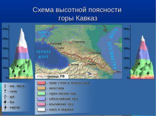 Схема высотной поясности горы Кавказ