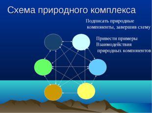 Схема природного комплекса Подписать природные компоненты, завершив схему При