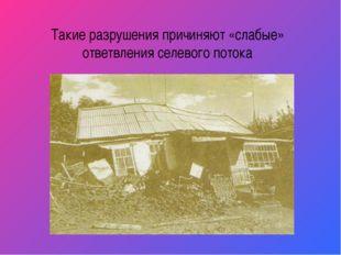 Такие разрушения причиняют «слабые» ответвления селевого потока