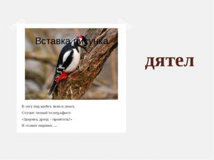 дятел В лесу под щебет, звон и свист, Стучит лесной телеграфист: «Здорово, др