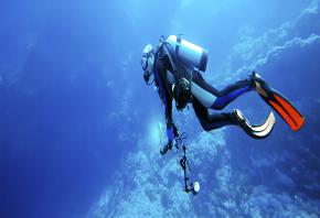 http://ekoodo.com/uploads/company/cover/124/Self-Reliant-Diver.png