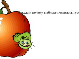 Откуда и почему в яблоке появилась гусеница ?