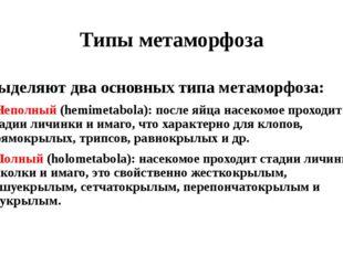 Типы метаморфоза Выделяют два основных типа метаморфоза: • Неполный (hemimeta