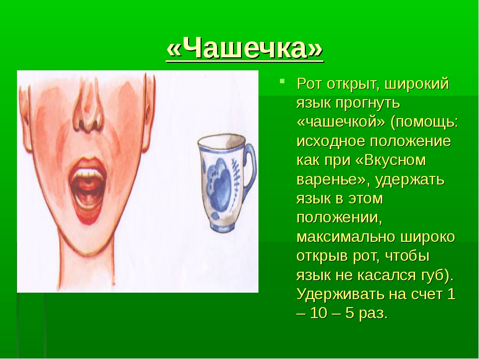 «Чашечка» Рот открыт, широкий язык прогнуть «чашечкой» (помощь: исходное пол...