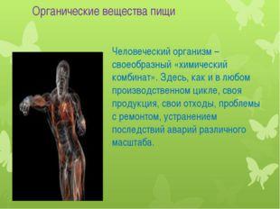 Человеческий организм – своеобразный «химический комбинат». Здесь, как и в лю