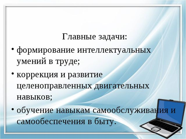 Главные задачи: формирование интеллектуальных умений в труде; коррекция и ра...