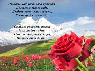Любовь, как роза, роза красная, Цветет в моем саду. Любовь моя - как песенка,