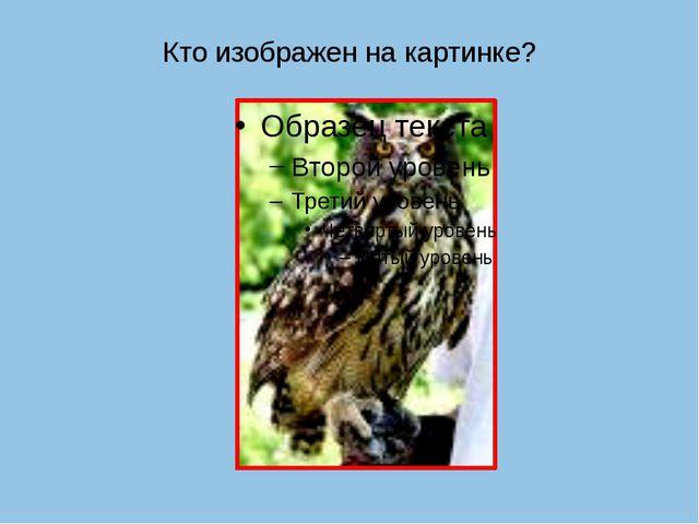 Кто изображен на картинке?