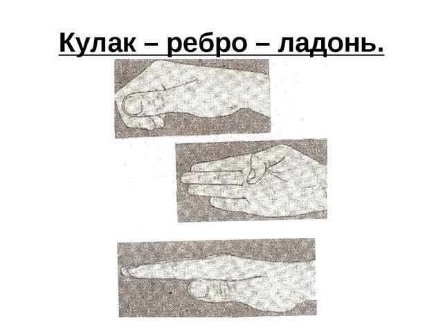 Кулак – ребро – ладонь.
