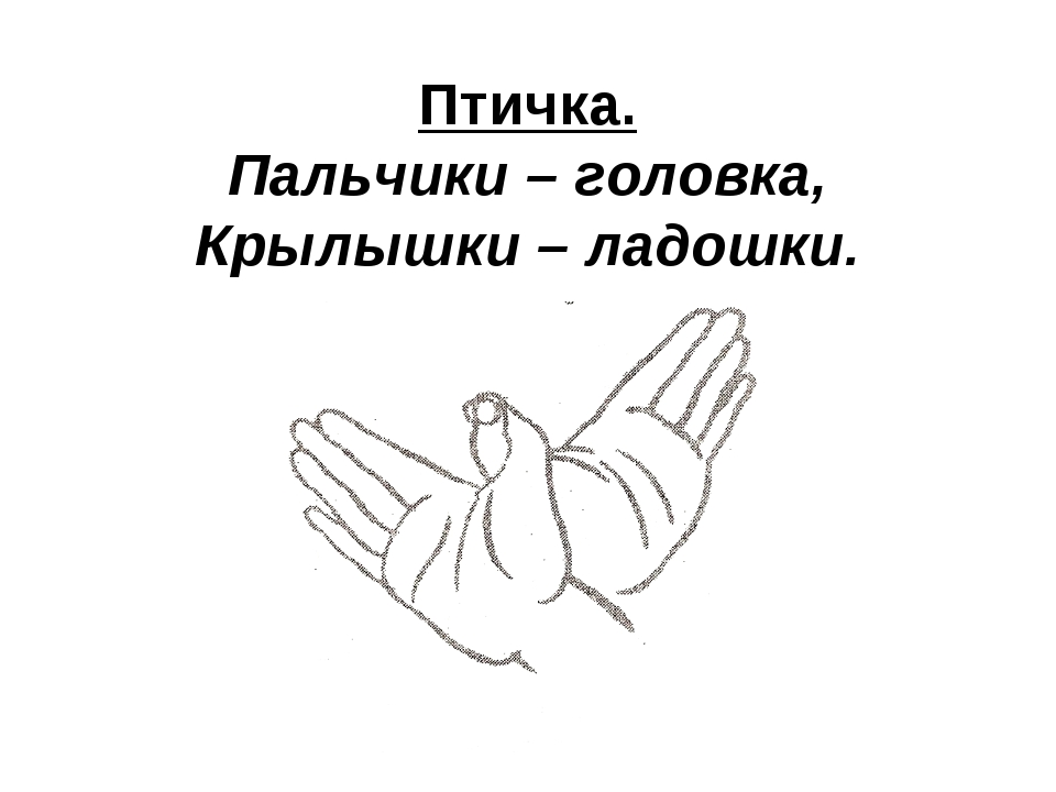 Птичка. Пальчики – головка, Крылышки – ладошки.