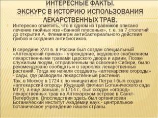 Интересно отметить, что в одном из травников описано лечение гнойных язв «бан