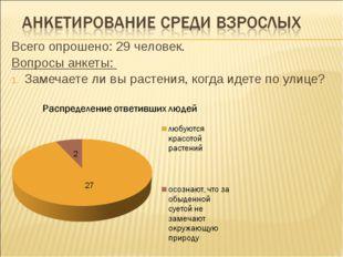 Всего опрошено: 29 человек. Вопросы анкеты: Замечаете ли вы растения, когда и
