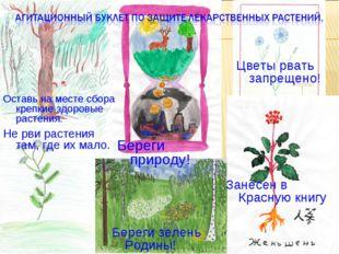 Занесен в Красную книгу Не рви растения там, где их мало. Цветы рвать запреще