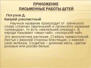 Потулов Д. Кипрей узколистный Научное название происходит от греческого