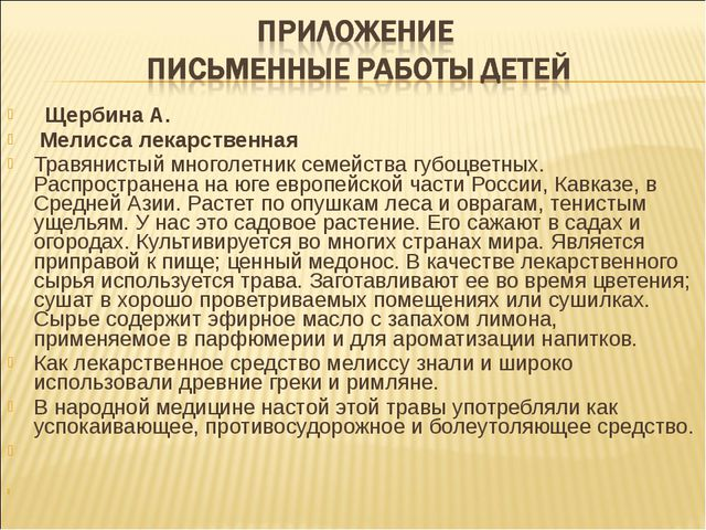 Щербина А. Мелисса лекарственная Травянистый многолетник семейства губоцв...