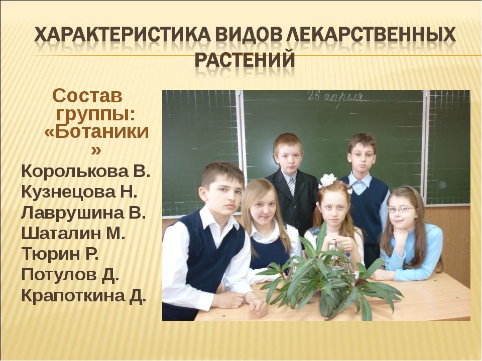 Состав группы: «Ботаники» Королькова В. Кузнецова Н. Лаврушина В. Шаталин М....