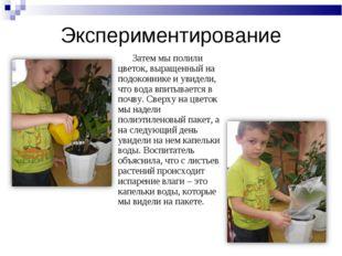 Экспериментирование Затем мы полили цветок, выращенный на подоконнике и увиде