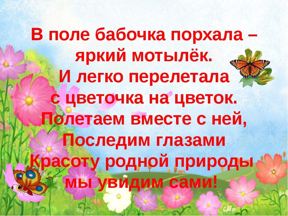В поле бабочка порхала – яркий мотылёк. И легко перелетала с цветочка на цве...