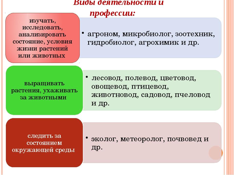 Виды деятельности и профессии: