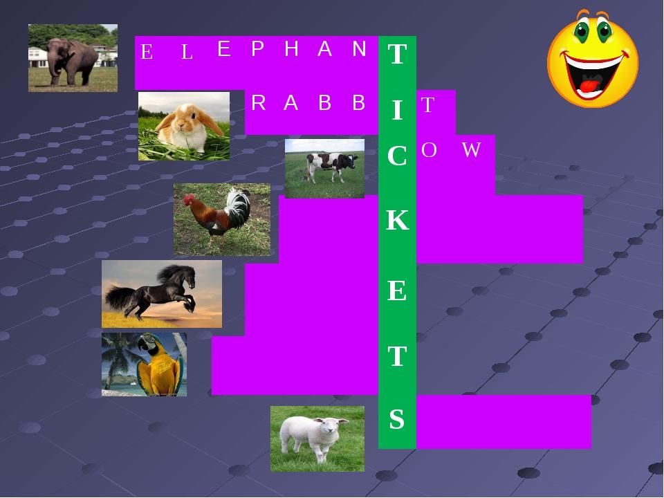 E LE PHANT RABB I T C O W K E...