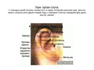 Уши- орган слуха. С помощью ушей человек слышит все те звуки, которыми наполн
