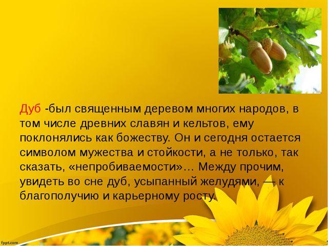 Дуб -был священным деревом многих народов, в том числе древних славян и кель...