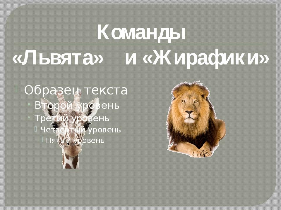 Команды «Львята» и «Жирафики»