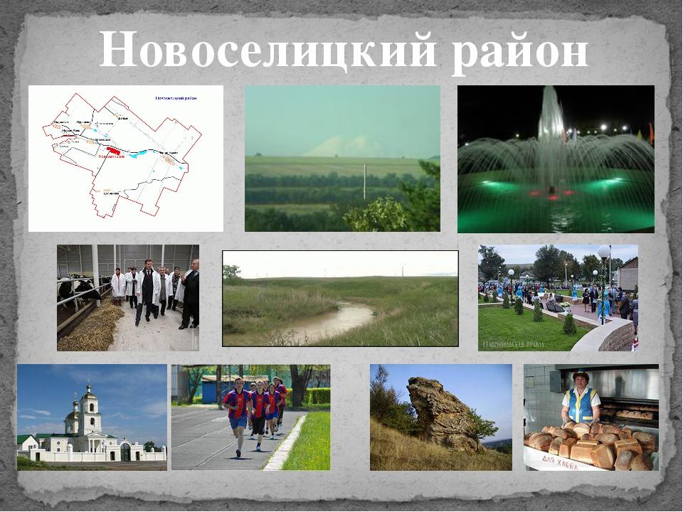 Новоселицкий район