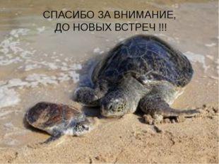 СПАСИБО ЗА ВНИМАНИЕ, ДО НОВЫХ ВСТРЕЧ !!!