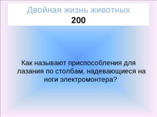 Двойная жизнь животных 200 Как называют приспособления для лазания по столбам