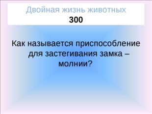 Двойная жизнь животных 300 Как называется приспособление для застегивания зам