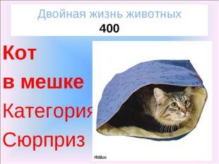 Двойная жизнь животных 400 Кот в мешке Категория Сюрприз