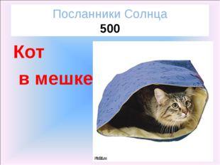 Посланники Солнца 500 Кот в мешке