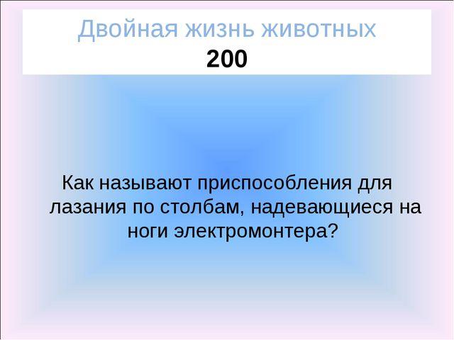Двойная жизнь животных 200 Как называют приспособления для лазания по столбам...