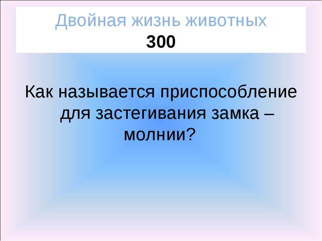 Двойная жизнь животных 300 Как называется приспособление для застегивания зам...