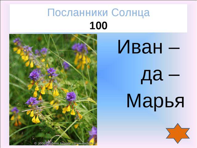 Иван – да – Марья Посланники Солнца 100
