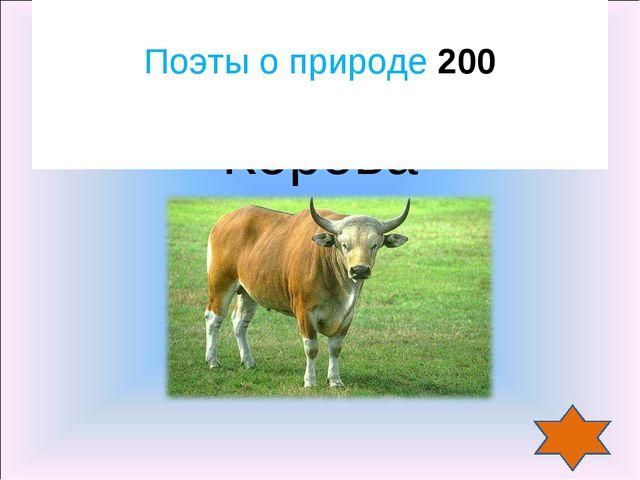 Корова Поэты о природе 200