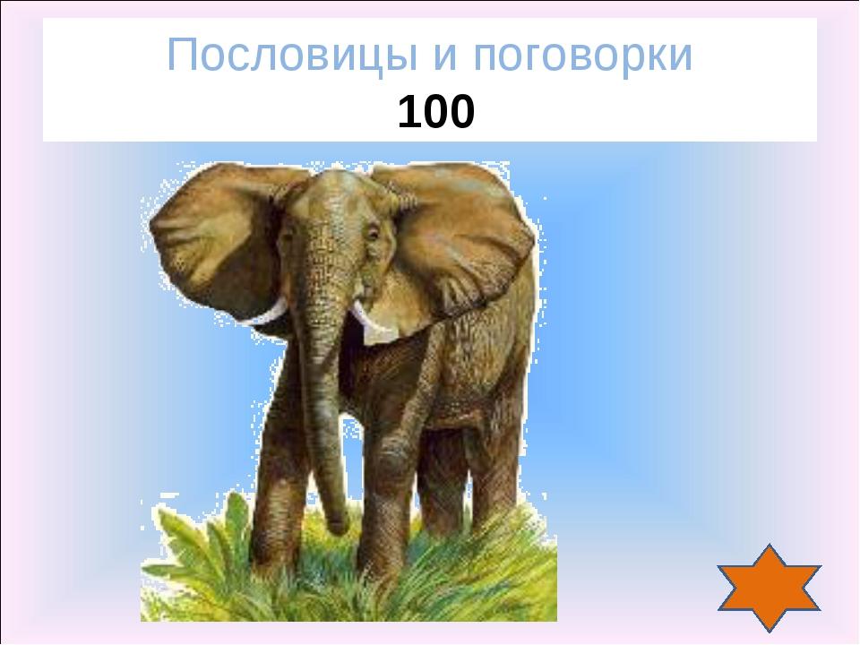 Пословицы и поговорки 100