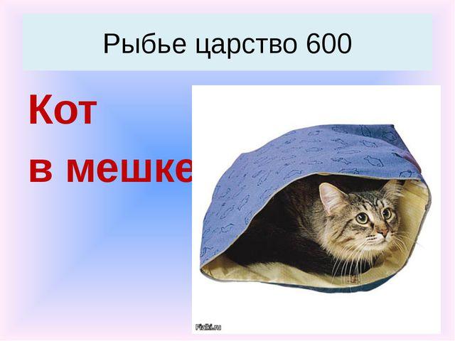 Сокол Хищники 800