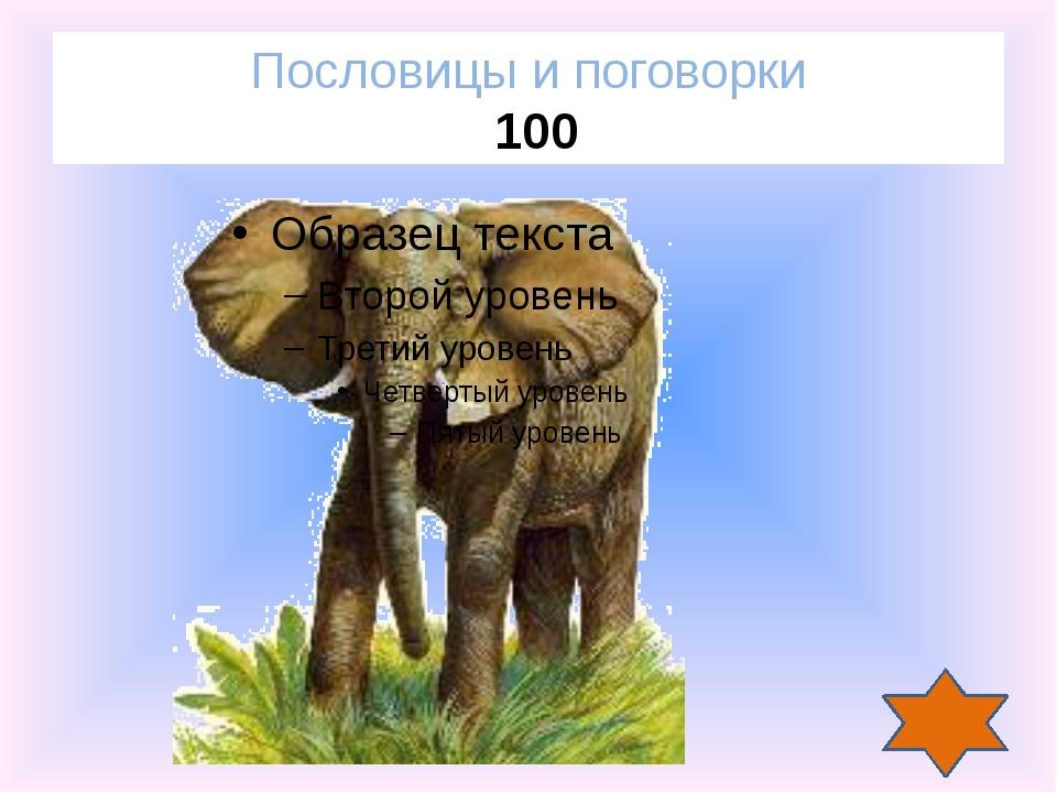 Аукцион Аукцион Аукцион Покорившие небо 600