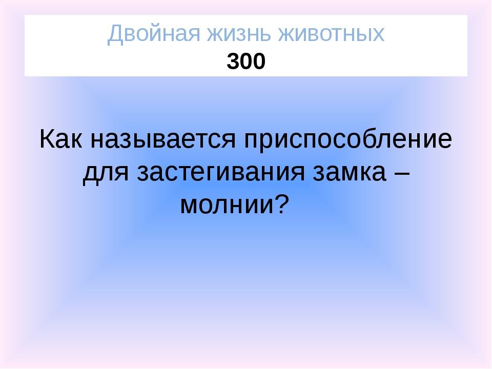 Пойдет шестой Двойная жизнь животных 400