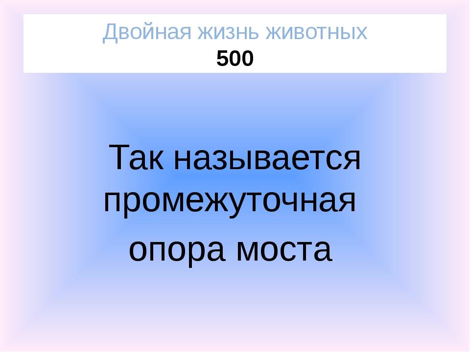 Ромашка пахучая Посланники Солнца 400