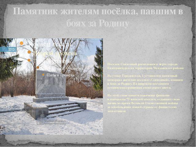 Памятник жителям посёлка, павшим в боях за Родину Поселок Совхозный расположе...
