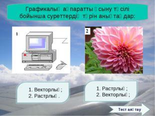 Графикалық ақпаратты ұсыну тәсілі бойынша суреттердің түрін анықтаңдар: Тест