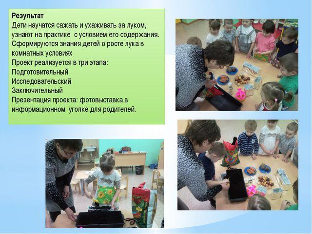 Результат Дети научатся сажать и ухаживать за луком, узнают на практике с усл...